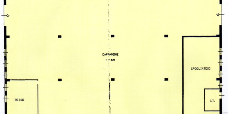 CSPT6